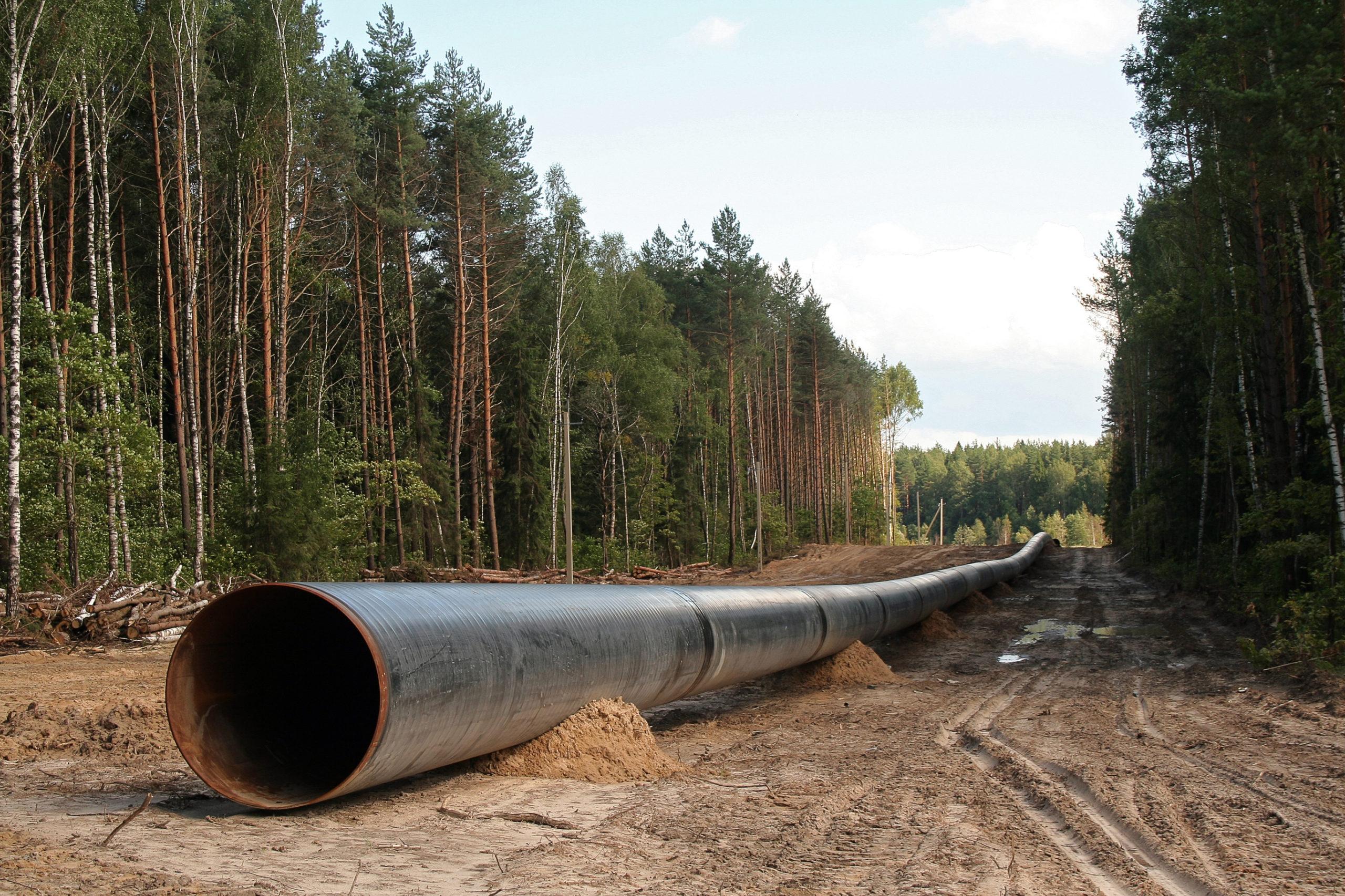 pipeline woods